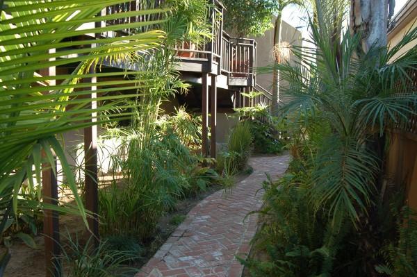 Office garden path